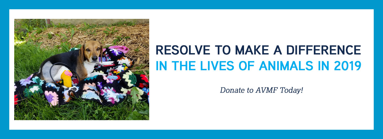 2019 Resolve to Donate
